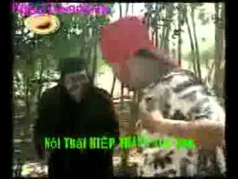 Trại Tâm Thần   Nhóm Hài Thanh Tùng   Clip giải trí  hài kịch