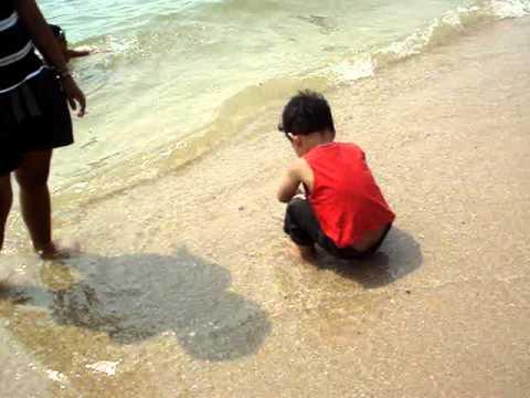 หาดบางแสน ( Bang Saen Beach  )