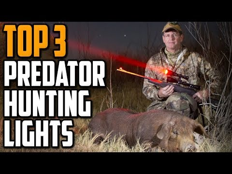Best Predator Hunting Light 2020 - Top 3 Predator Hunting Lights Reviews
