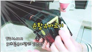 전자동커피머신기(필립스hd8651)/윤활유바르기/유지관…