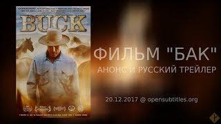 """Фильм """"Бак"""" ('Buck', 2011) - анонс и трейлер"""