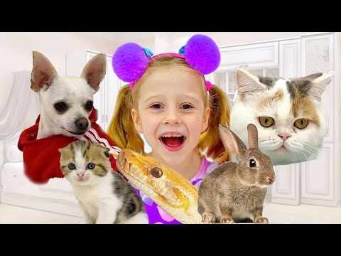 Nastya and all the animals in her house