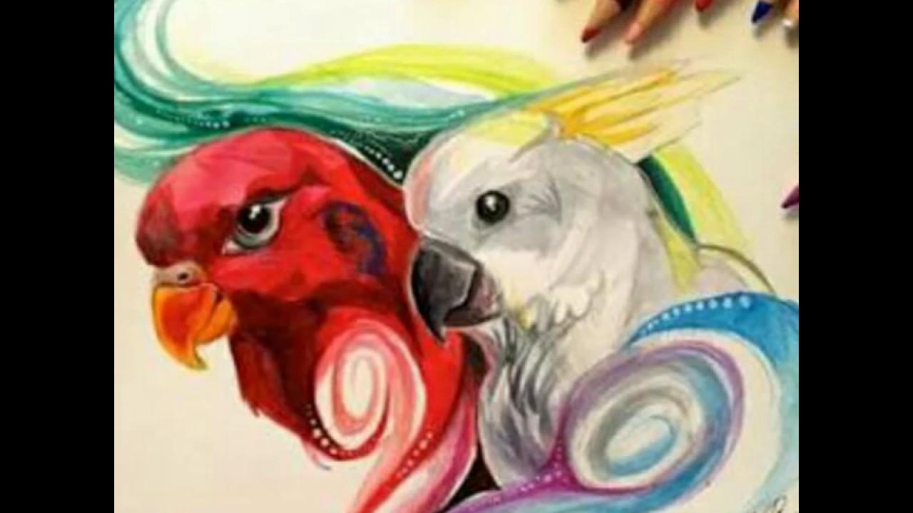Mi Top 10 Dibujos Hermosos De Animales Youtube