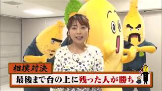ナナナチャレンジ~「ナナナ VS テレビ野郎ナナーナ」 相撲対決 Part1