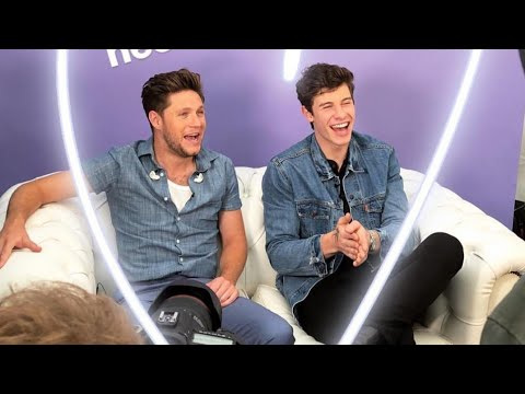 Shawn Mendes and Niall...