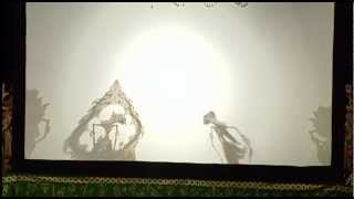 Shadow Puppets 5