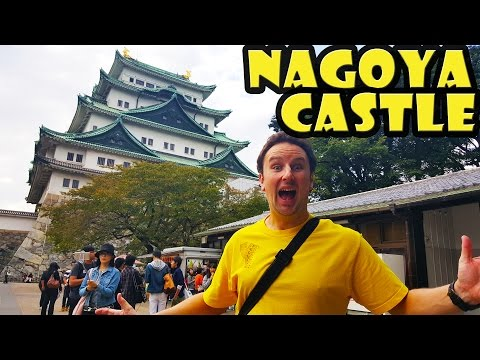 Nagoya Castle Travel Guide