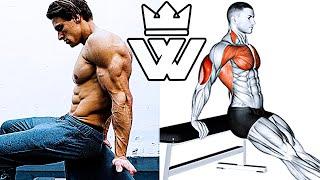 BEST ARM Training | BRUTAL ARM WORKOUT