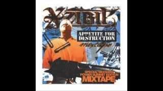 Xzibit   Appetite For Destruction (2004) MIXTAPE