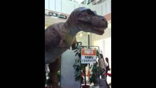 加西市イオンにて恐竜暴れてます⁈