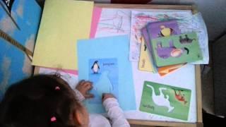 Hayvan çizimi yapıyoruz :)