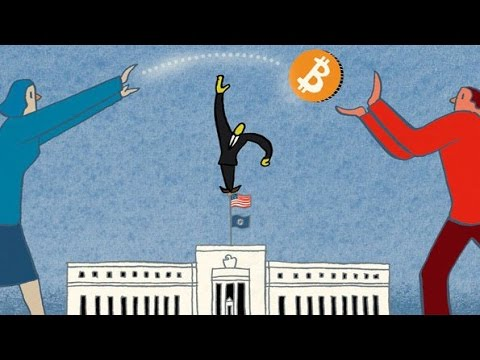 Trace Mayer: Bitcoin is True Free Market Regulation