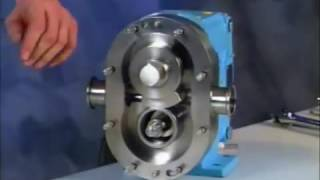 Fluid Head Assembly Video for WCB Universal 2 Series Positive Displacement Pumps