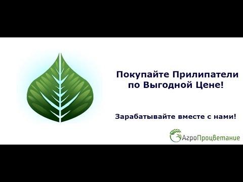 Рынок Украины заполонила селитра из России - YouTube