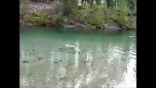 Рыбалка в Туве(Рыбалка., 2012-03-06T17:58:16.000Z)