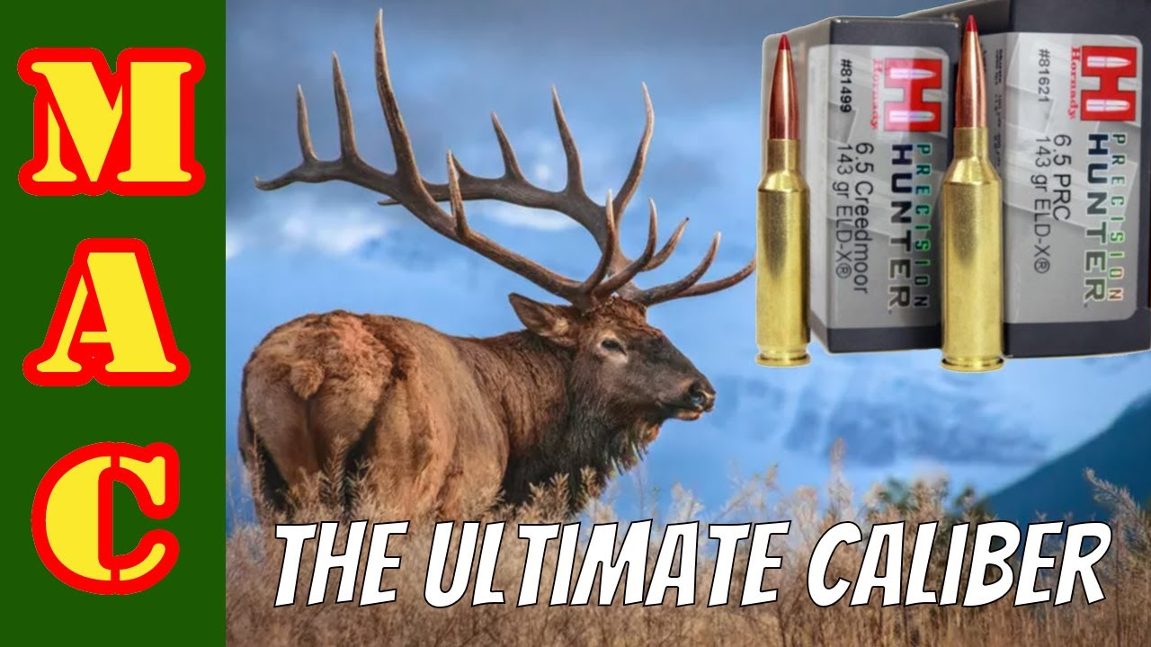 Download Search for the ULTIMATE hunting caliber - 6.5 PRC vs. 6.5 Creedmoor