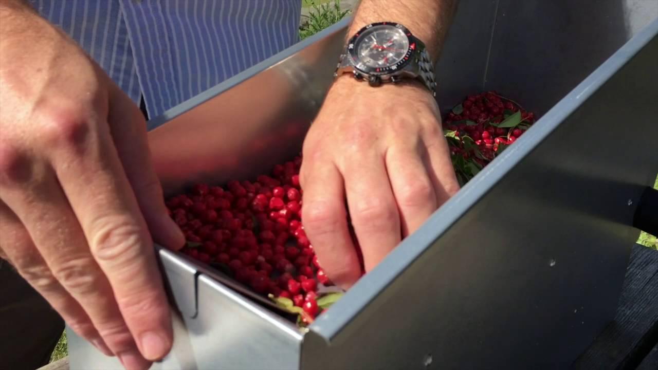 Omtyckta Bärrensaren The Berrybooster - svenska - YouTube HS-73