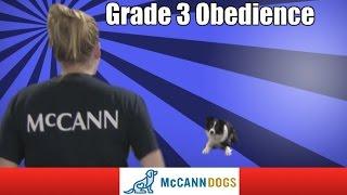 Grand Slam Grade 3 Obedience
