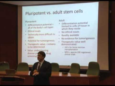 Stem Cells: Current reality and future promise by Prof Michael Pepper