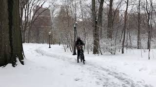 Snow Blankets New York