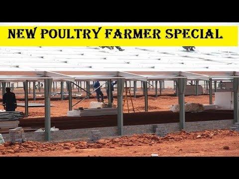 inspiration-!-motivation-for-new-poultry-farmer-start-up-|-abhishek-singh