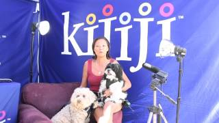 Shih Poo, Kayleigh & Bichon Poodle, Brucie - June 9, 2013