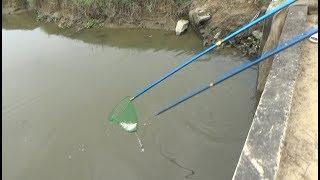 bắt cá quá dễ với mẫu máy kích cá cực mạnh | alo 0943236639