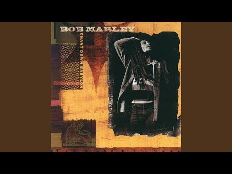 Chant Down Babalon Bob Marley Remix album