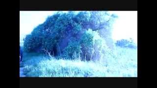 Tenerife Sea - Ed Sheeran (Official Cover Video)