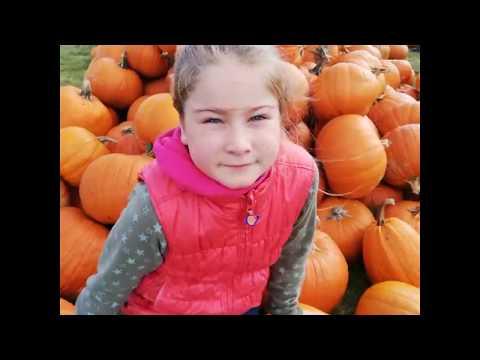 Farma Dyń Pumpkin Farm Warszawa k Konstancin Powsin