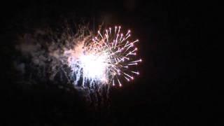 "Cat 4 - Display Firework - ""HOMELAND WALTZ 49 SHOTS 245 BREAK - SSCF025"