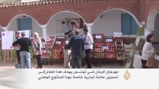 مهرجان الرمان في تونس