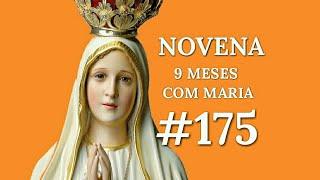 [#175] NOVENA 9 MESES COM MARIA 175° DIA - 15 de Setembro 2018.