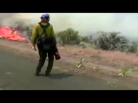 Feds Burning Cows ALIVE, Torching Homes, Imprisoning Ranchers!