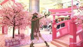 【踊ってみた】千本桜(百狐千楽Remix) / 花たん【スタファ振り付け】