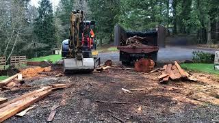 Sawmill cleanup