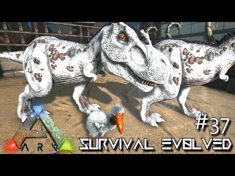 ARK: Survival Evolved - BABY TERROR BIRD & TREX BREEDING !!! - SEASON 3 [S3 E37] (Gameplay)