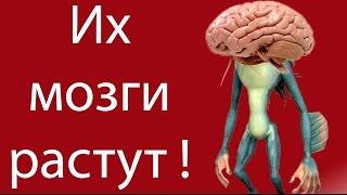 Их мозги растут ! ( Spore с модами 7 )