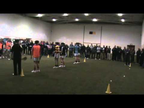 Denis Walsh Hurling Workshop