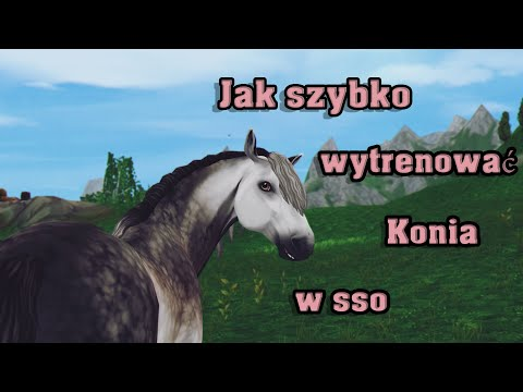 🐴Jak Szybko Wytrenować Konia W Sso?😉