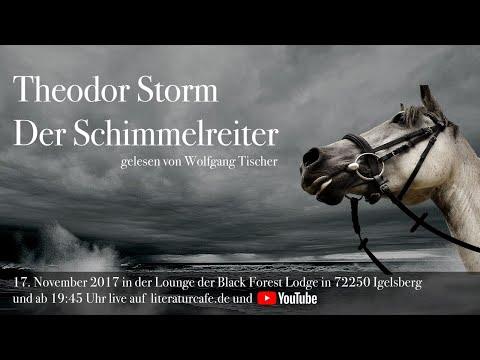 Theodor Storm: Der Schimmelreiter - Teil 1 - gelesen von Wolfgang Tischer