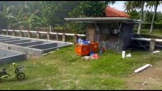 Solar Fish Farming Project In Indonesia