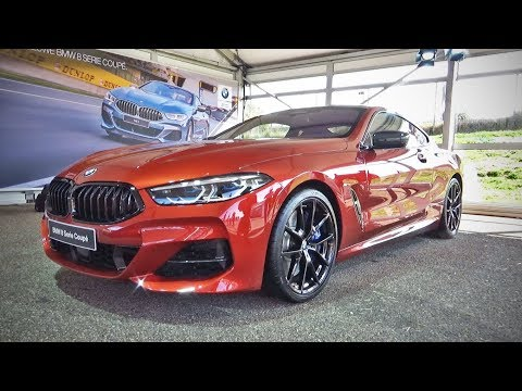 2019 BMW M850i xDrive & BMW M8 GTE (exterior overview)