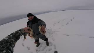 Рыбалка жерлицы на таежном озере Север Вологодской области щука судак налим и окунь