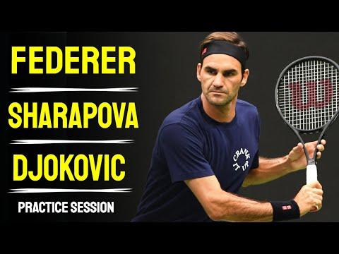 Federer - Sharapova - Djokovic -  Cincinnati Masters 2014 - Forehand, Backhand, Serve