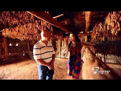 Cuba  - Vinales Tobacco Farm