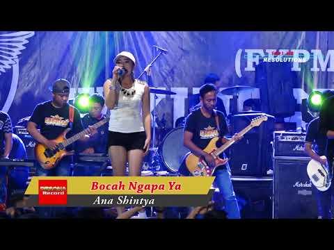 Bocah Ngapa Ya Ana Shintya New King Sta Live Golelo Terbaru 2018