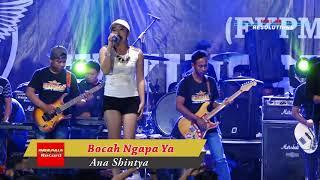 Download Bocah Ngapa Ya Ana Shintya New King Sta Live Golelo Terbaru 2018 Mp3
