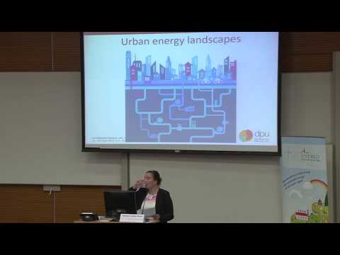 Urbanization, Energy Access and Justice: A Comparative Perspective