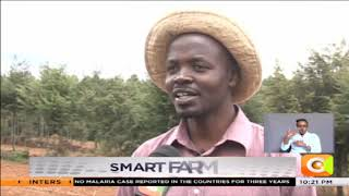 | SMART FARM | Soil Testing Benefits